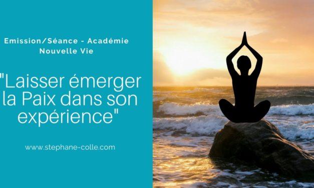 13/01/2020 Séance/Emission sur la Web TV ANV : «Laisser émerger la Paix dans son expérience»
