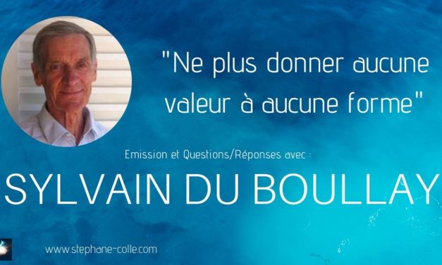 25/03/2020 Sylvain du Boullay – «Ne plus donner aucune valeur à aucune forme» – Questions/Réponses en direct