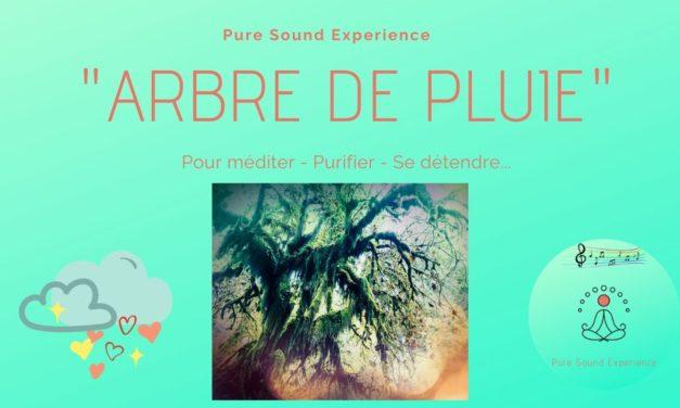 Vidéo : «Arbre de pluie» – Pour méditer – Se détendre – Se calmer… – Pure Sound Experience