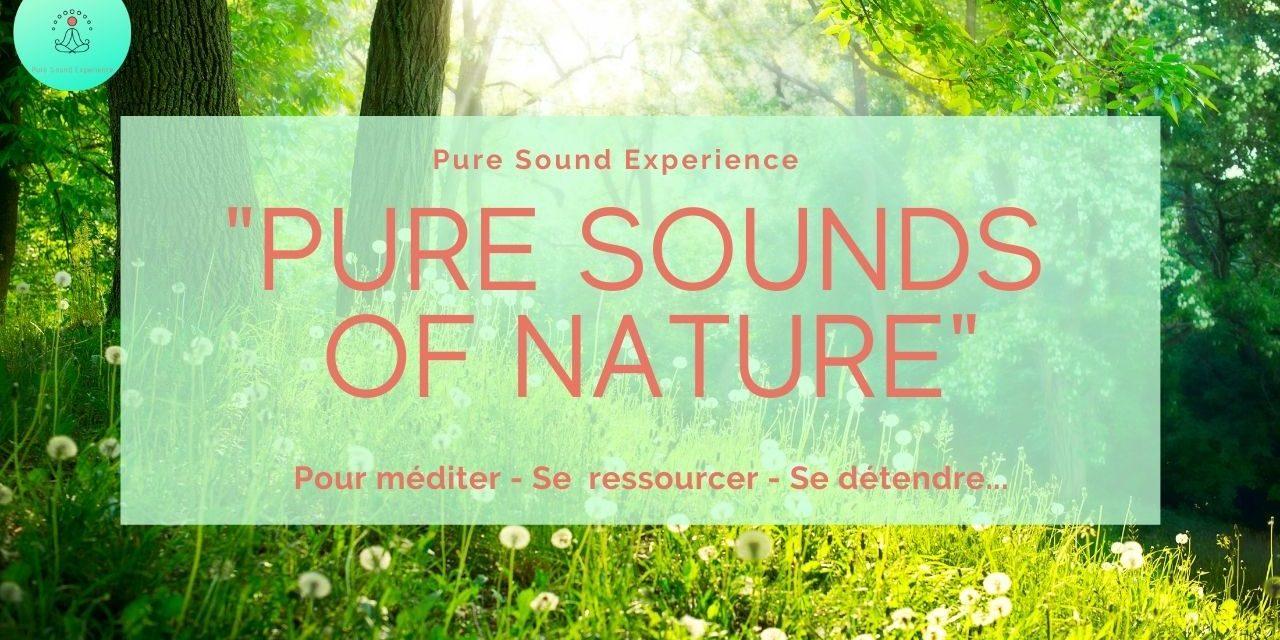 Vidéo : «Pure Sounds of Nature» – Sons de la nature au printemps – Chant des oiseaux –  Grillons – Vent dans les arbres…