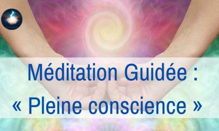 11/02/2021 Séance – Méditation guidée : Pleine Conscience